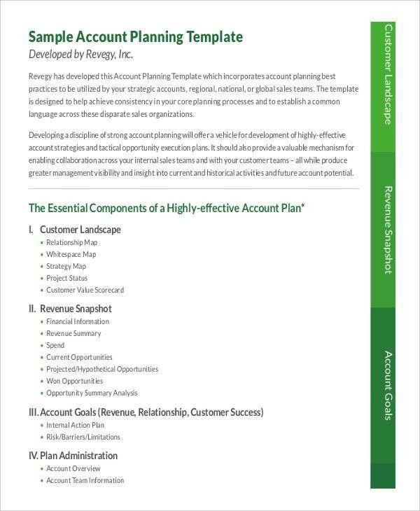 9+ Strategic Account Plan Templates -Free Sample ,Example Format ...