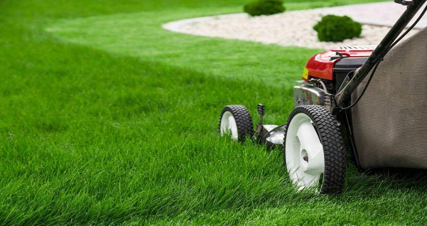 Landscaping & Lawn Care | Plymouth MI | Northville MI | Serene ...