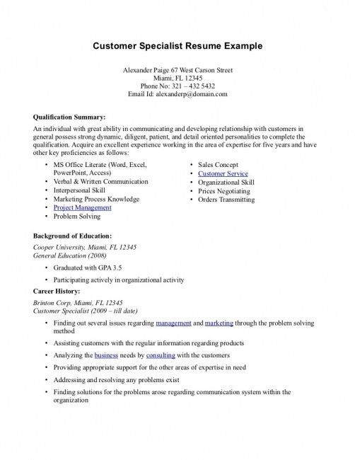 Professional Summary Resume Examples Customer Service | resume ...