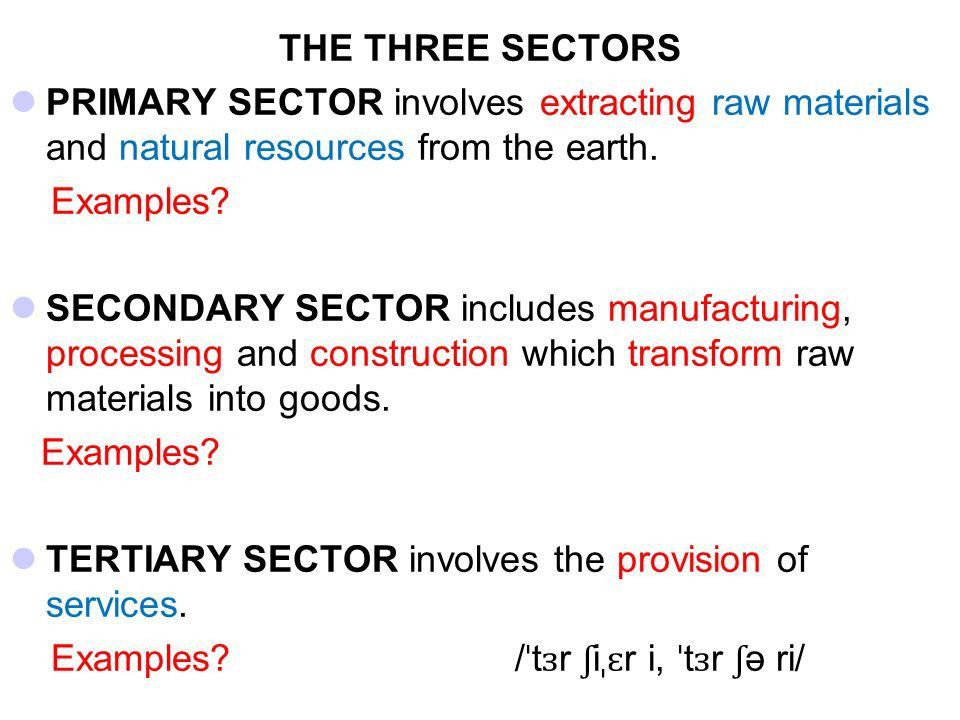 THE DIFFERENT SECTORS OF THE ECONOMY - ppt video online download