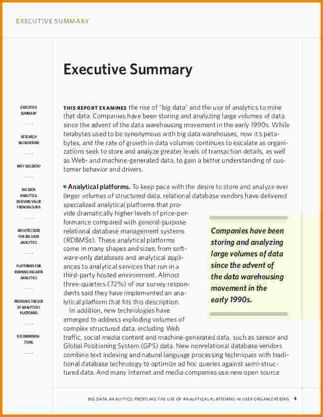 10+ example executive summary | nypd resume