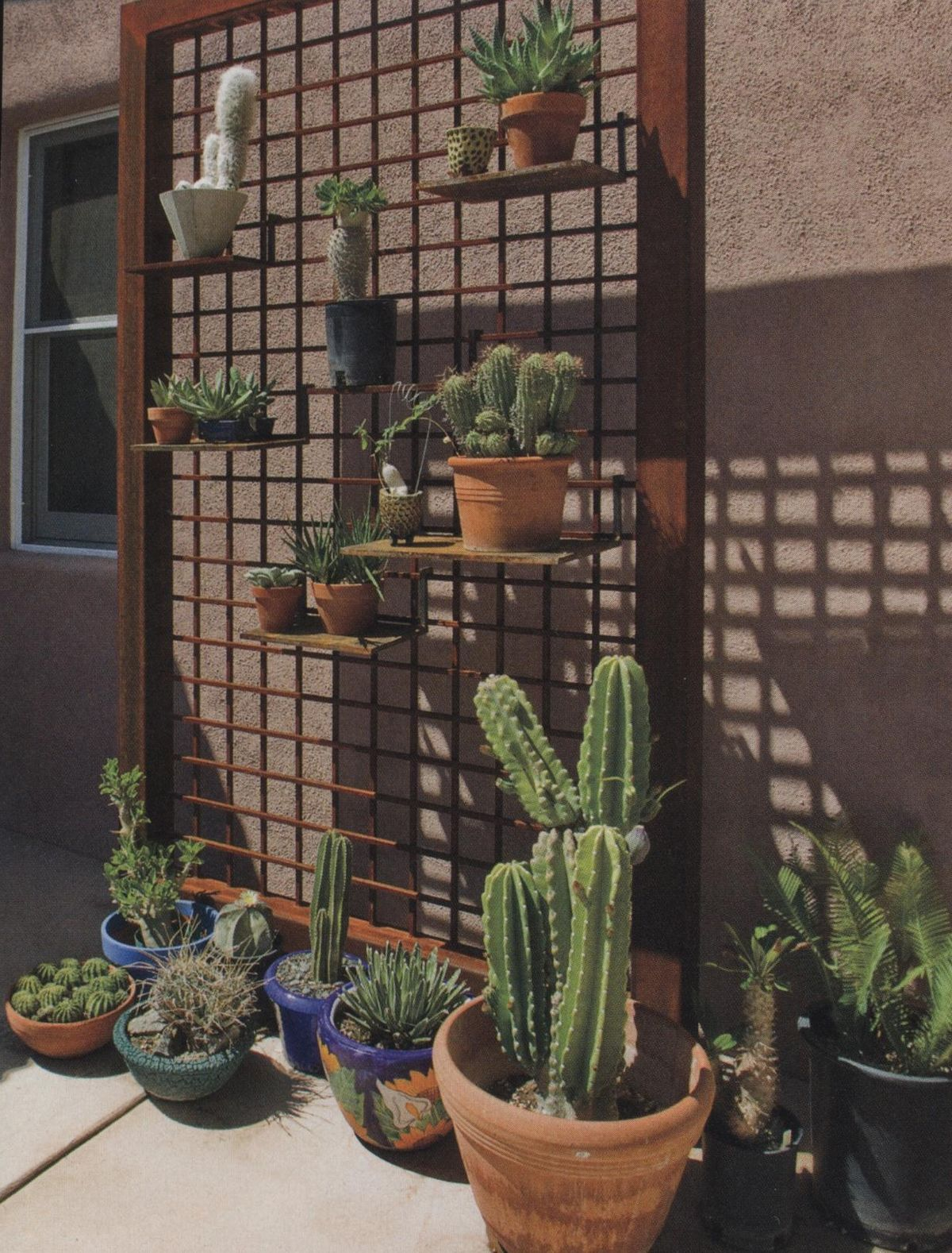 Phoenix Homes Home And Garden And Phoenix On Pinterest