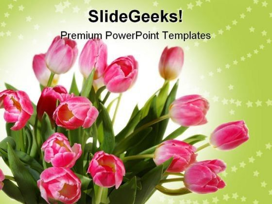 Tulips Bouquet Beauty PowerPoint Templates And PowerPoint ...