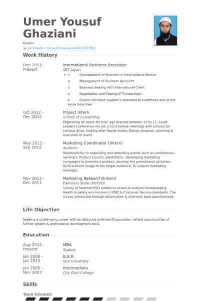 Business Executive Resume samples - VisualCV resume samples database