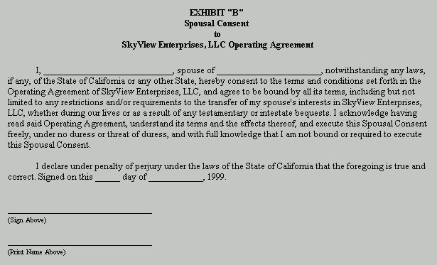 Example Document for LLC Operating Agreement