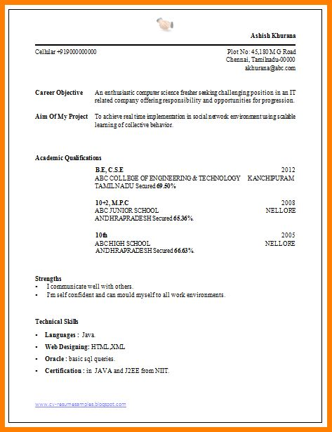 Professional Resume Format For A Fresher | Professional resumes ...