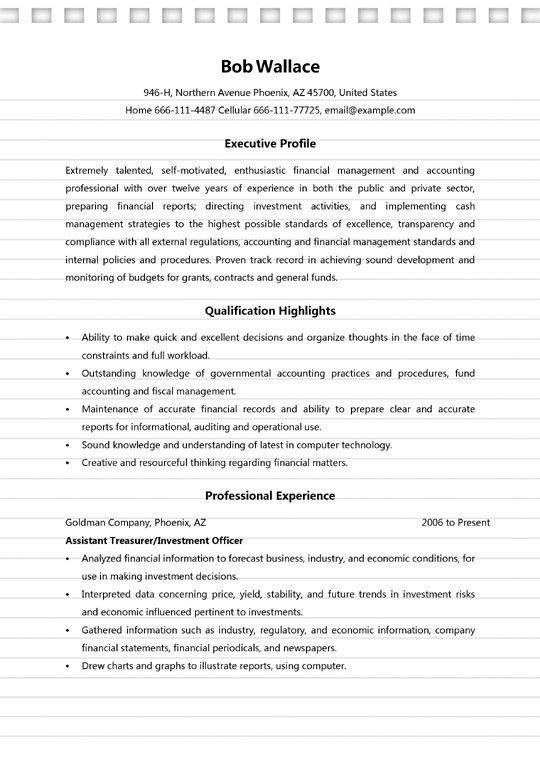4+ Finance Manager Resume Sample - MS Word (.doc) Format