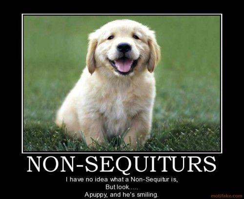 Non Sequitur | Fellowship of the Minds