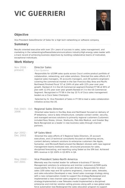 director of sales resume sample director resume sales manager