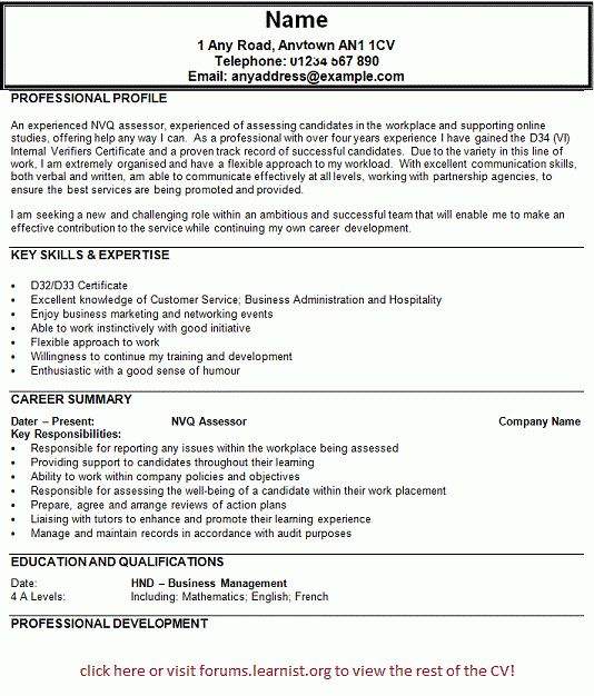 Download First Job Resume Template | haadyaooverbayresort.com