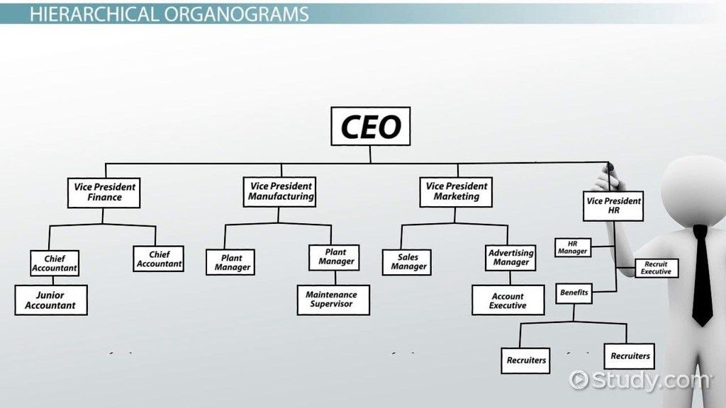 What is an Organogram? - Definition, Structure & Example - Video ...