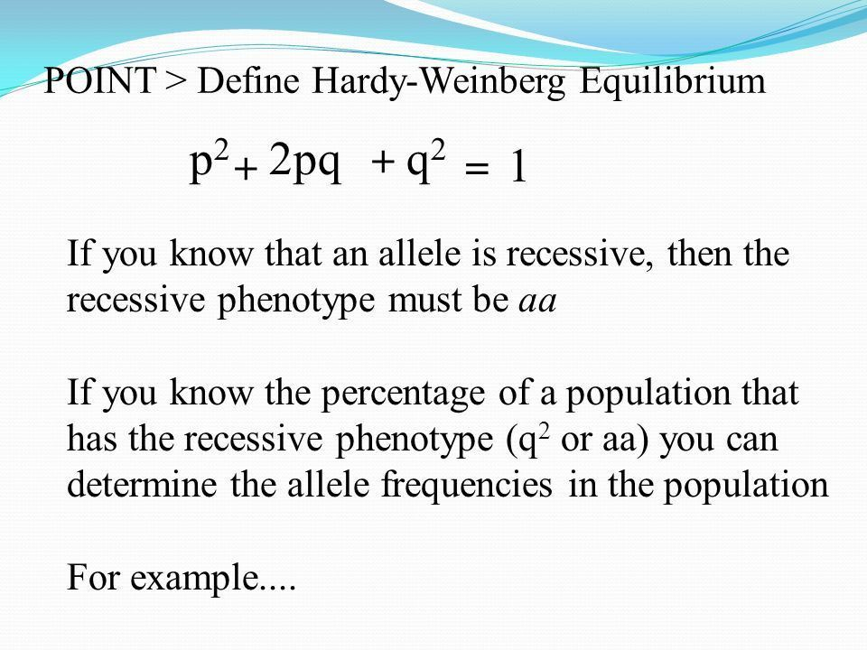 POINT > Define Hardy-Weinberg Equilibrium POINT > Use Hardy ...