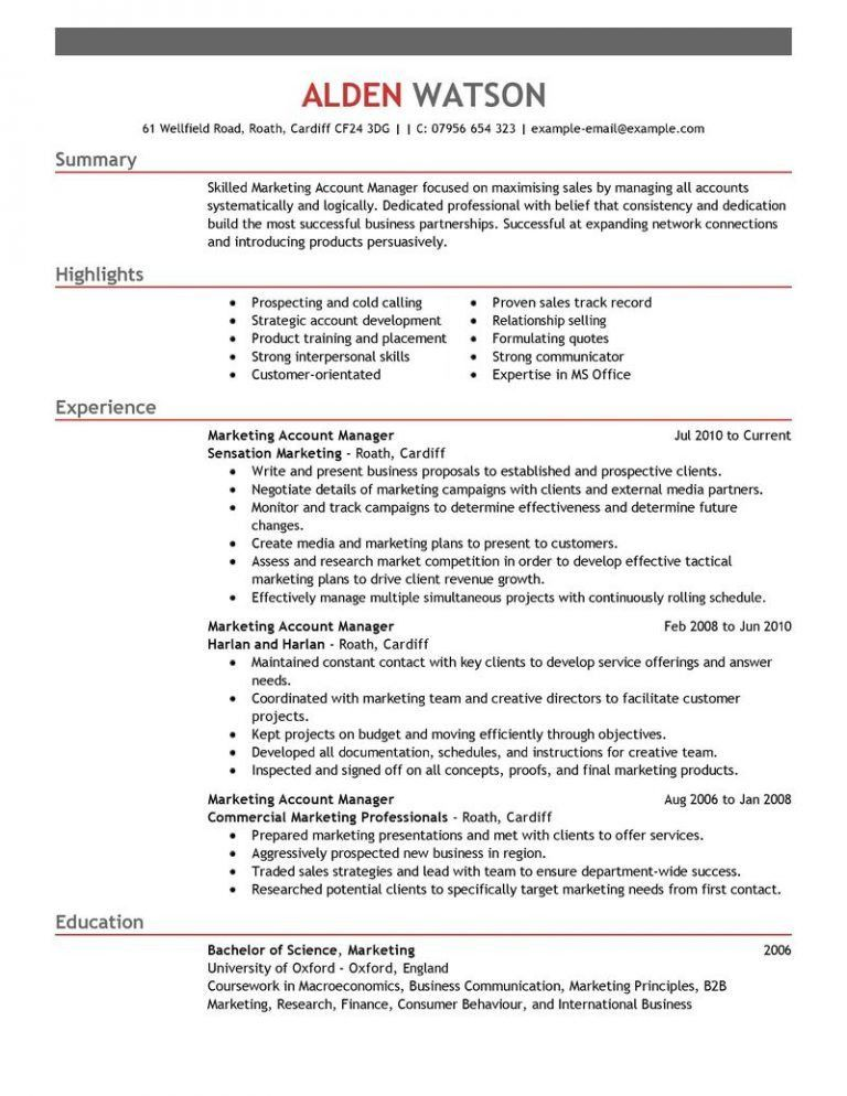 Cool Inspiration Manager Resume Examples 16 Best Account Example ...