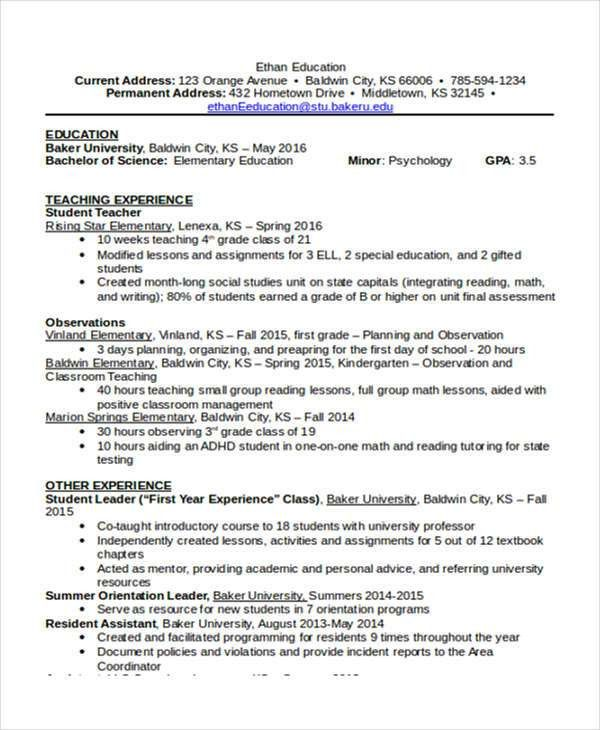 16+ Basic Education Resumes | Free & Premium Templates