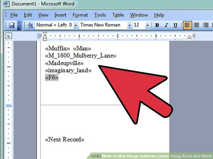 How to Mail Merge Address Labels Using Excel and Word: 14 Steps