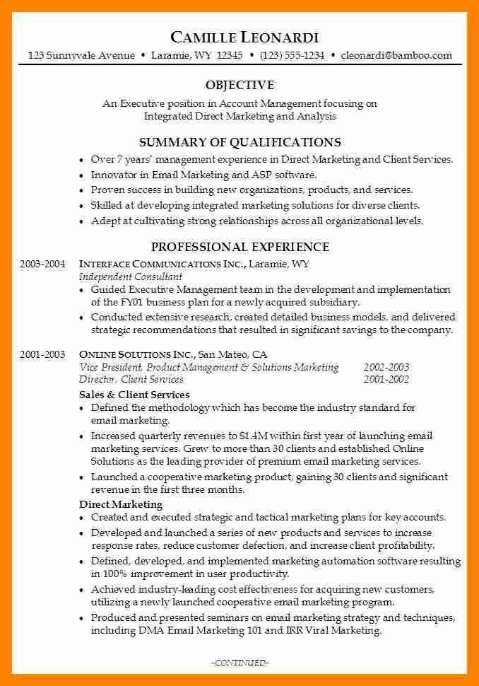 Examples Of Career Summary - cv01.billybullock.us