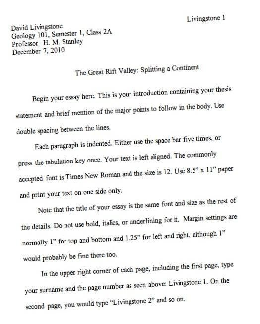essay essaywriting apa writing format sample persuasive outline ...
