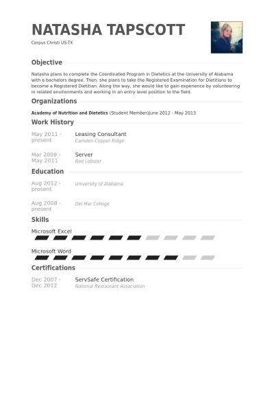 consulting resume templates 8 best best consultant resume