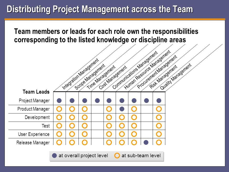 Project Management Role or Discipline Geof Lory – GTD Consulting ...