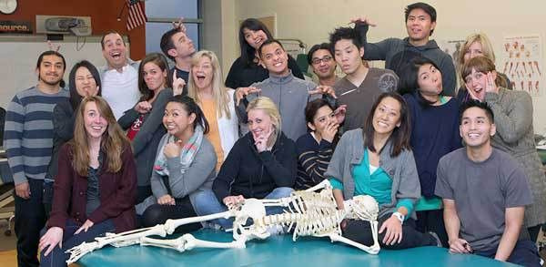 Physical Therapist Asst.: Introduction, Degree, Contact Staff ...