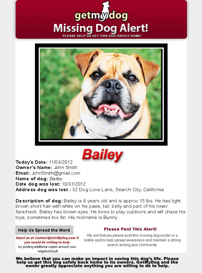 Lost Dog Alert - Pet Amber Alert :: Report Lost Dog ~ | GetMyDog