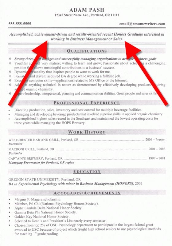 Download Simple Objective For Resume | haadyaooverbayresort.com