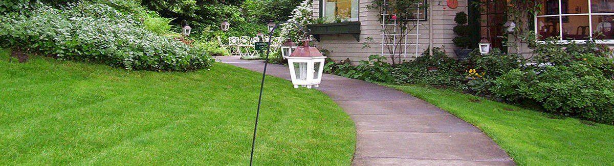 Mt. Diablo Lawn Care & Landscaping Alexandria VA | Call 571-257 ...