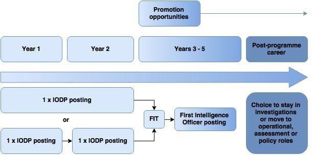 Intelligence Officer Development Programme (IODP) | MI5 - The ...
