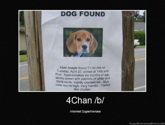 Dog Found | Funny Motivational Posters, Demotivators ...