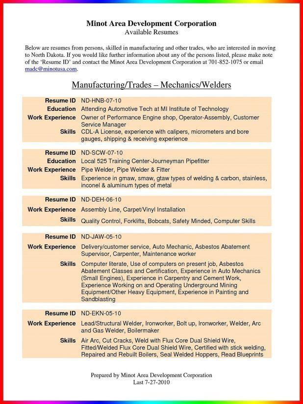 automotive resume summary_002 automotive resume template. lube ...