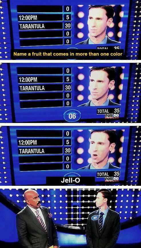 "17 ""Family Feud"" Answers That'll Make You Feel Smart 