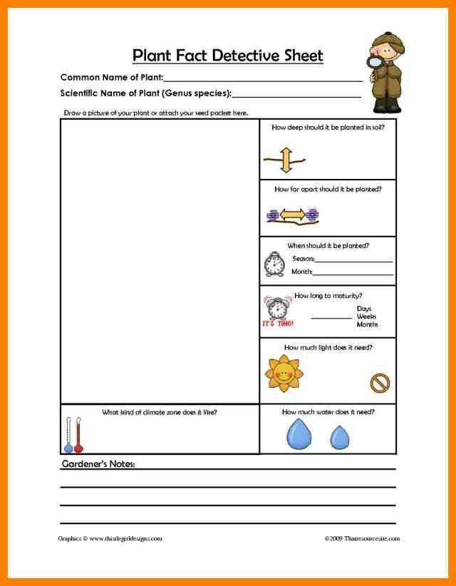 9+ plant profile sheet template | target cashier