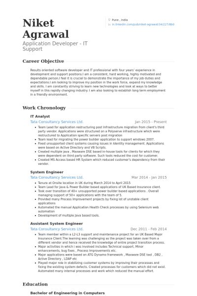 It Analyst Resume samples - VisualCV resume samples database