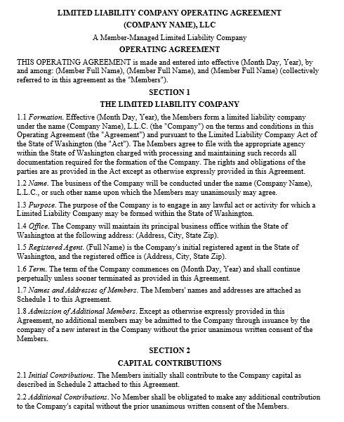 Single Member Llc Operating Agreement Template Free Zrom