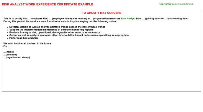 Risk Analyst Work Experience Certificate