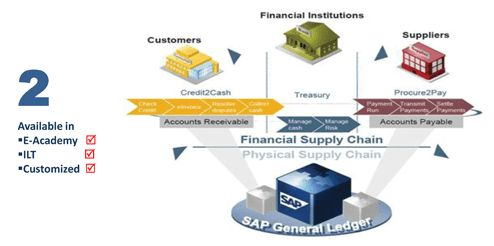 SAP Course in Pakistan: SAP financial Accounting