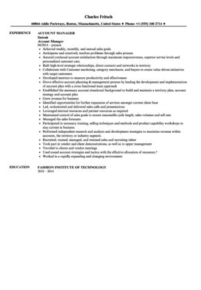 Account Manager Resume Sample | Velvet Jobs