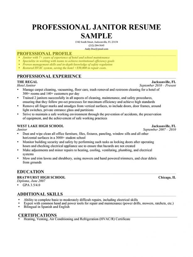 Resume : Chef Resume Skills Sample Resume Layout Design Retail ...
