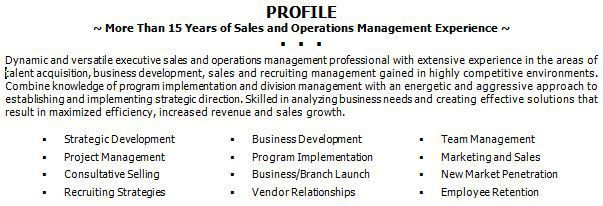 resume summary statements image sample resume summary statement ...