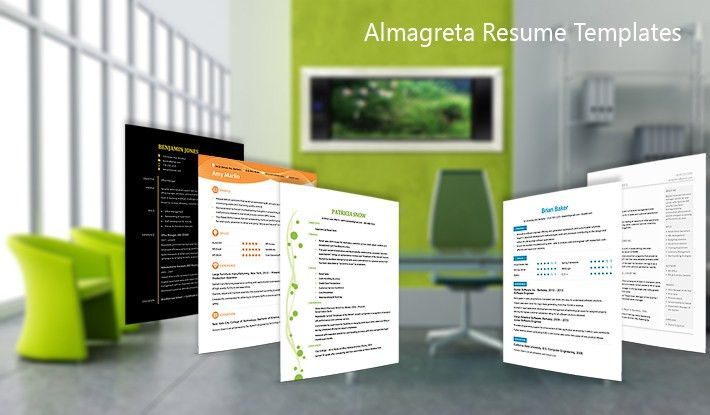 Professional Resume Templates That Stand Out