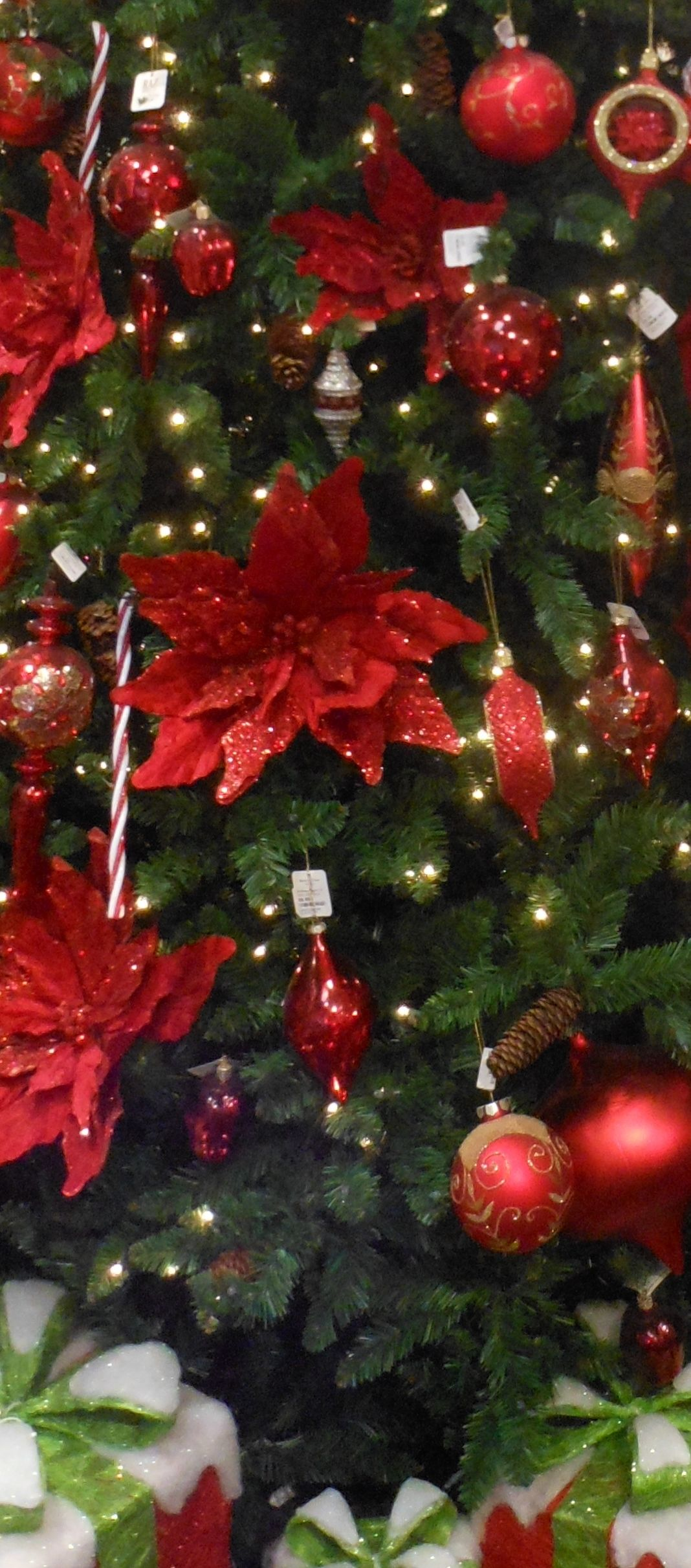 1000 Images About Christmas In Red N Green On Pinterest
