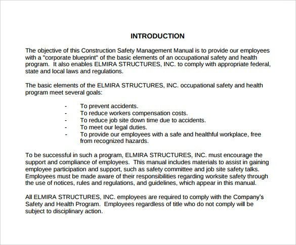 Safety Manual Sample - 13+ Example, Format