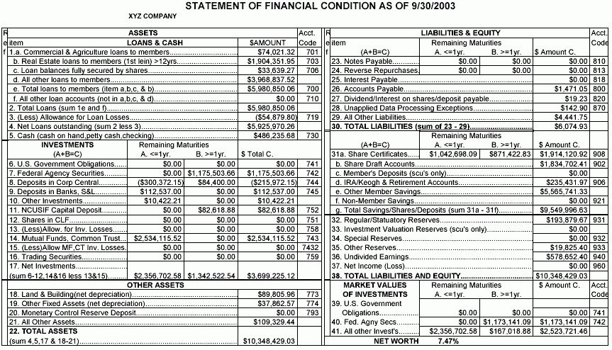 14 statement of financial condition | Financial Statement Form