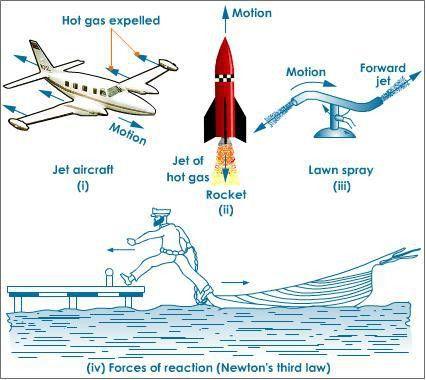 Newton's third Law of Motion | Tutorvista.com