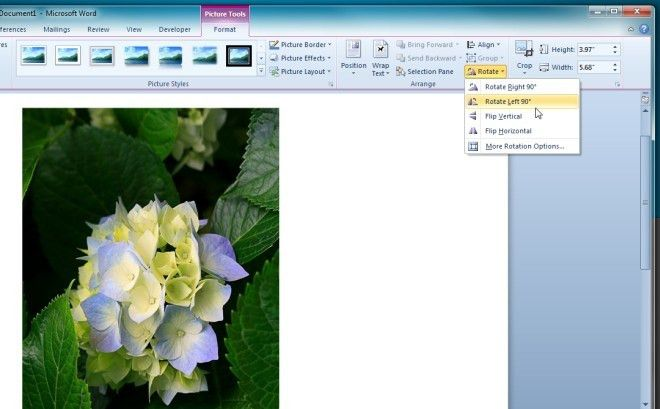 Word 2010: Rotate Images By Degrees