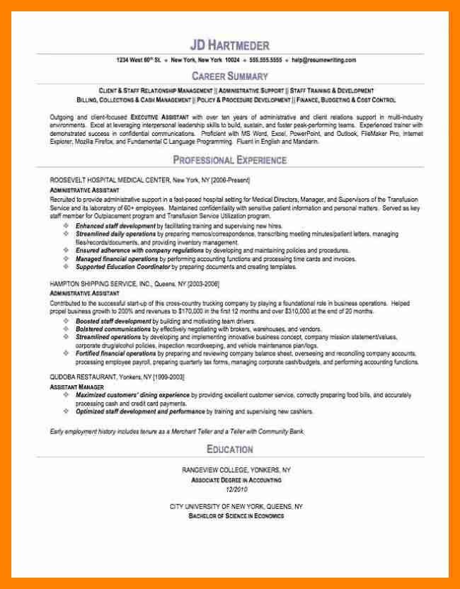 example of a resume summary resume professional summary. data ...