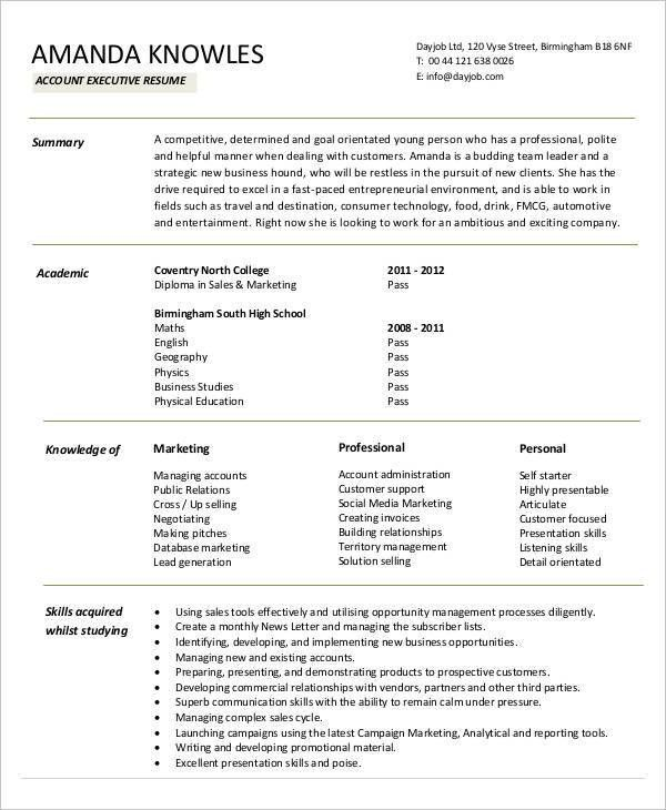 Best Executive Resume Templates - 26+ Free Word, PDF Documents ...
