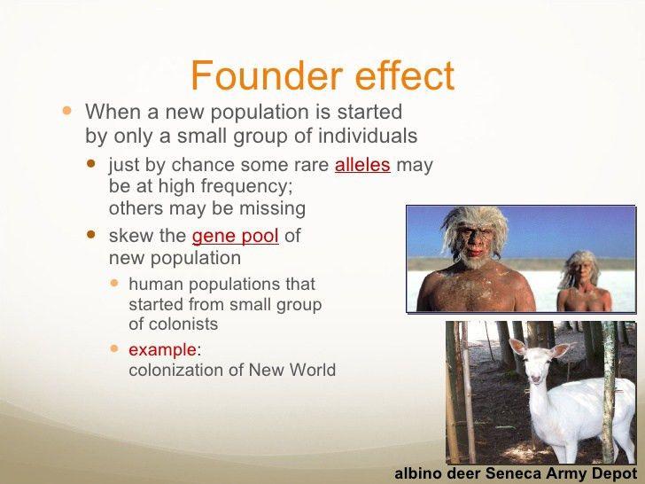 2. Evolutionary Forces