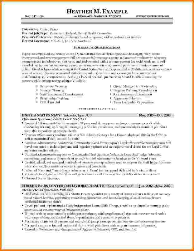 10+ federal government resume samples | Financial Statement Form