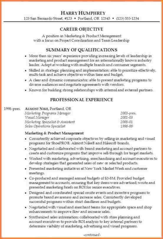 resume professional summary examples